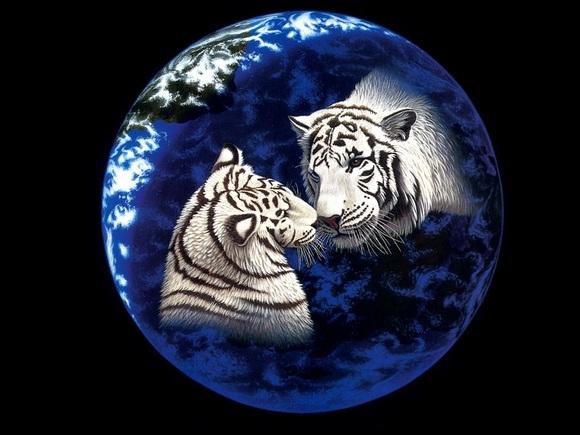 动物和星球手绘壁纸欣赏[多图]