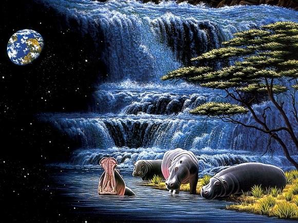 《天天酷跑》单局5个大动物头像在那个模式中爆率高?