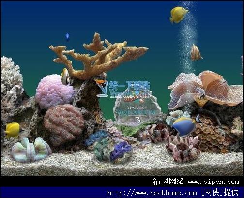 热带鱼水族箱屏保程序 如何获取激活码图片