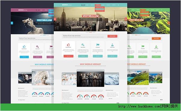 2013最新漂亮使用国外网站模板PSD合集下载[多图]图片1