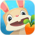 兔子复仇记(Patchmania)