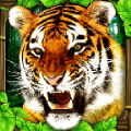 老虎模拟器中文版