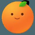 桔子浏览器官方苹果版下载 V 1.0
