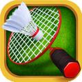 羽毛球之星2无限金币中文破解版(Badminton 2) v1.6.076