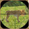 狮子猎杀3D
