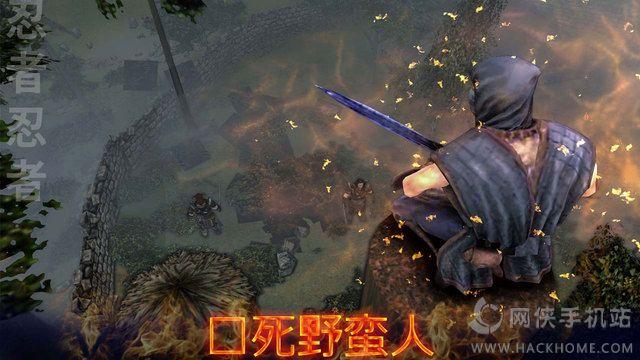 影忍者刺客战士官网游戏手机版图1: