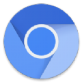 Chromium浏览器app手机版 v1.0