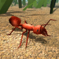 模拟火蚁游戏
