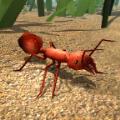 模拟火蚁破解IOS存档版(Fire Ant Simulator) v1.0