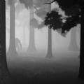 雾霾狂奔内购破解版 v1.1