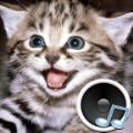 动物的声音手机版app v1.9.2