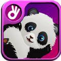 重力熊猫官方正版手机游戏下载 v1.1