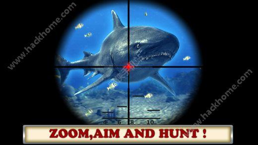 海洋饥饿的鲨鱼攻击内购破解版(Ocean Hungry Shark attack )图3: