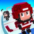 方块冰球游戏安卓版下载(Blocky Hockey) v1.1.204