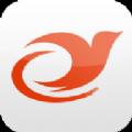 雏燕app下载手机版 v1.1.5