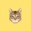 小猫借钱app