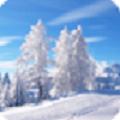 唯美冬天雪景动态壁纸app官方手机版下载 v1.0