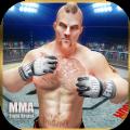 MMA战斗革命混合武术经理汉化中文版 v1.6