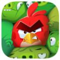 愤怒的小鸟神秘岛官方网站正版手游 v1.0