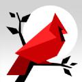 Cardinal Land拼图无限提示破解版 v1.3.1