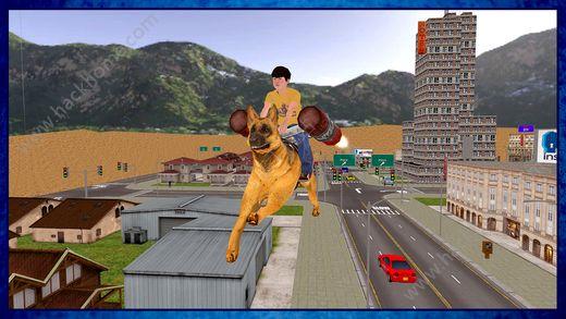 飞行狗模拟器游戏手机版下载图2: