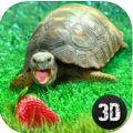 龟模拟器游戏