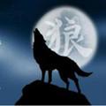 天狼直播ios二维码app下载安装 v1.0