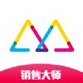 销售大师数据分析官网app v1.0