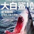 大白鲨红包挂软件app下载手机自动抢红包 v1.0