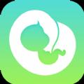 孕期伴侣官方版手机app下载安装 v5.0.10