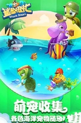 鲨鱼很忙黑屏怎么办 黑屏解决方法介绍[图]