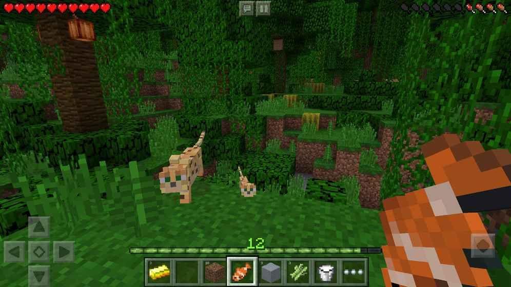 我的世界1.1.5.1版本官方最新游戏下载(Minecraft)图1: