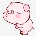 全民养猪苹果版