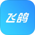 飞鸽出行app软件官方版下载安装 v1.0.0