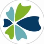 中民保险网+小程序