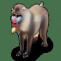 狒狒聚合直播vip会员破解版app下载 v1.0