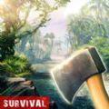生存岛活着或死去游戏官方安卓版下载 v1.0