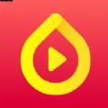 种子视频老版app软件下载安装 v1.0