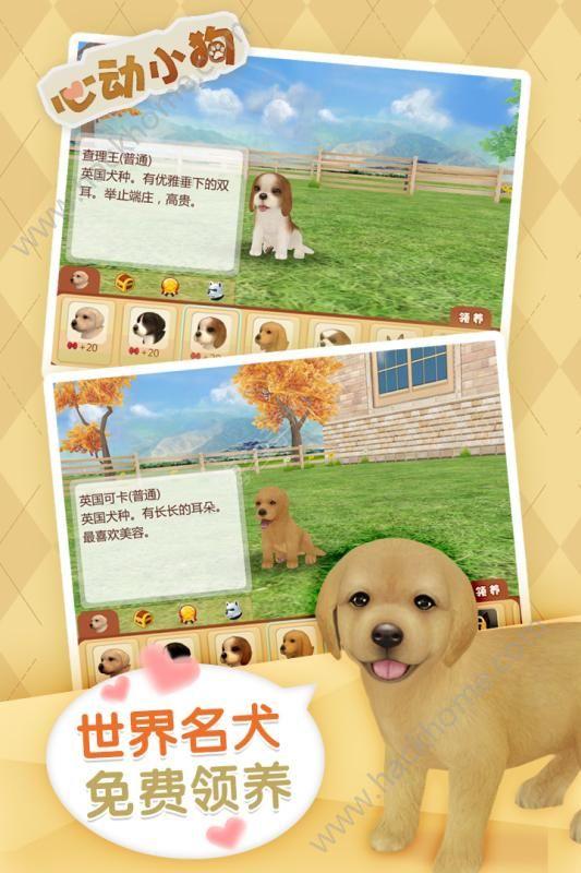 心动小狗最新版本安卓游戏(Dog Sweetie)图2:
