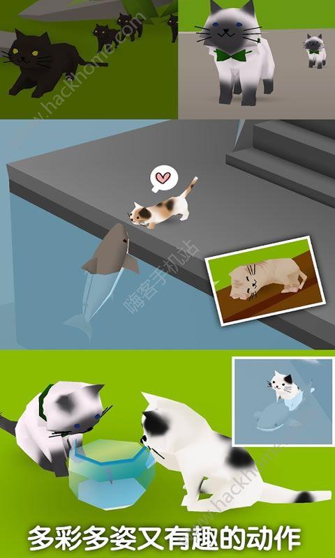 猫猫与鲨鱼游戏安卓版下载图4: