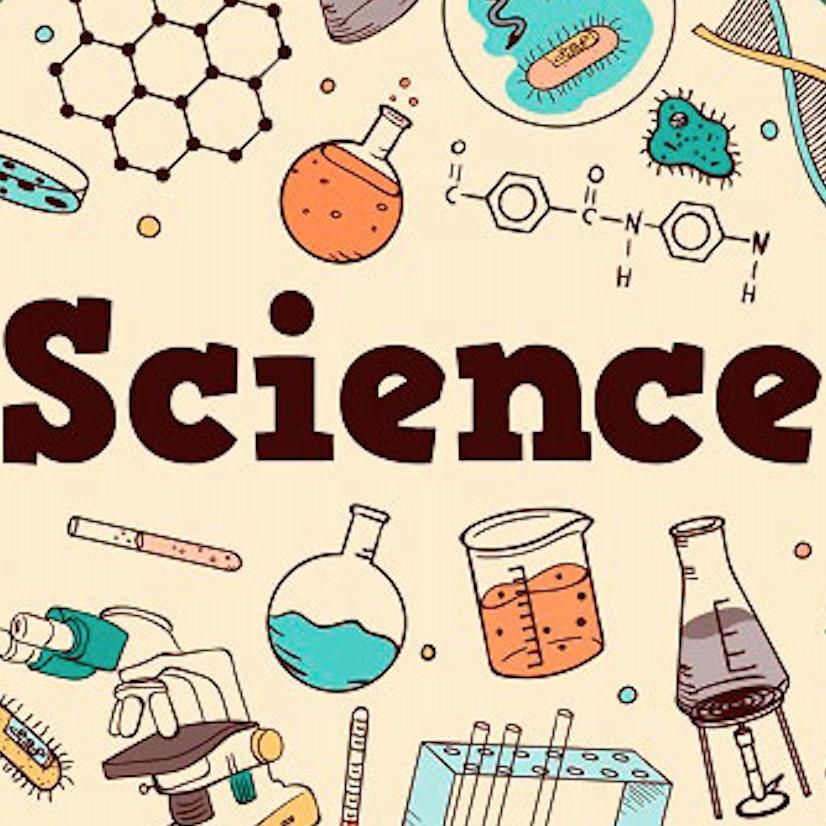 每日科学小程序