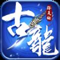 古龙群英传安卓九游正版手游 v1.0.0