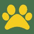 喵喵魔盒直播盒子官方二维码app下载 v1.0