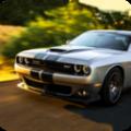真实飞驰游戏官方网站最新版下载 v3.2