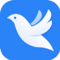 飞鸽信贷助手app安卓版下载 V1.0