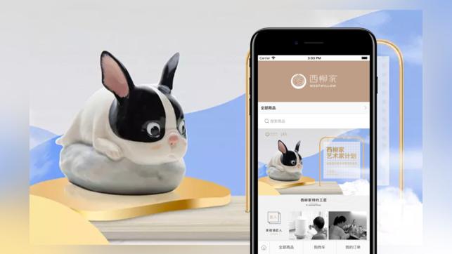 西柳家app下载手机版图片2