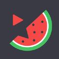 西瓜电视视频app下载手机版 v1.1
