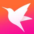 迅雷直播平台软件app官方版下载 v3.12.331