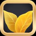 黄金叶贷款官方版app下载 v1.0.0