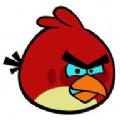 小鸟pt终身免费版